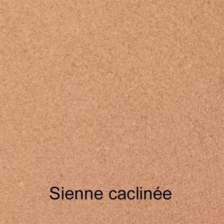 Pigment Blanc oxyde de titane rutile