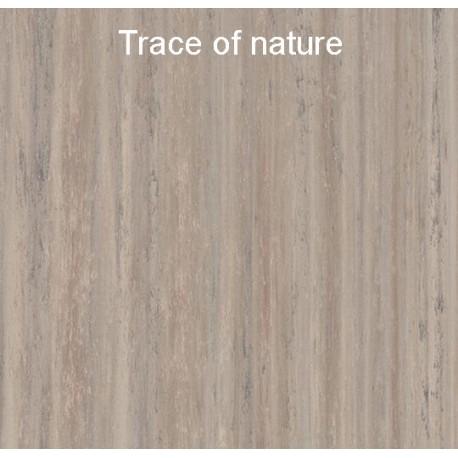 Trace of nature marmoleum click.